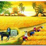 Mùa Gặt M320