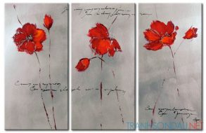 Cánh Hoa Poppy M545