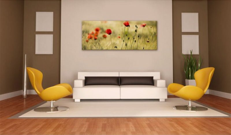 canh hoa poppy m549-4