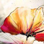 canh hoa poppy m552-2