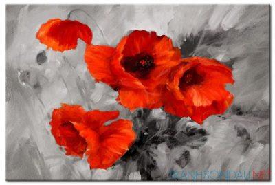 Cánh Hoa Poppy M553