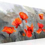 canh hoa poppy m555-1