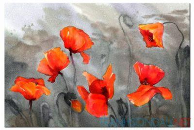 Cánh Hoa Poppy M555