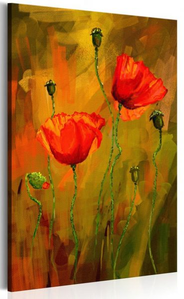 canh hoa poppy m578-1