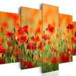 canh hoa poppy m579-1