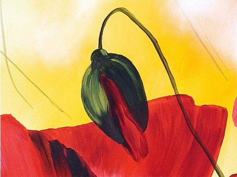 nhung canh hoa poppy m518-1