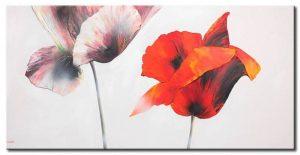 Những Cánh Hoa Poppy M543