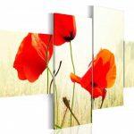 nhung canh hoa poppy m573-1