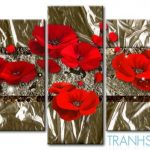 Những Cánh Hoa Poppy M576
