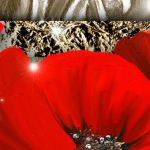 nhung canh hoa poppy m576-3