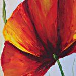 poppy khoe sac m515-2