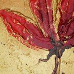 poppy khoe sac m535-1