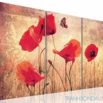 poppy khoe sac m538-1