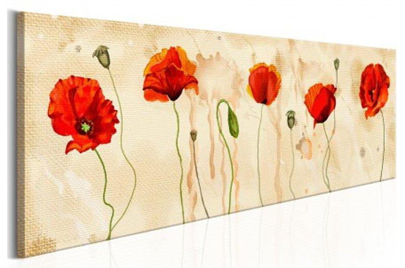Những Cánh Hoa Poppy M540