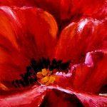 poppy khoe sac m564-4