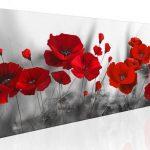 poppy khoe sac m570-1