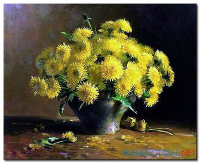Hoa Cúc Khoe Sắc M835