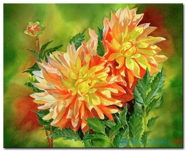 Hoa Cúc Khoe Sắc M846