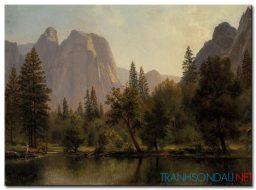 Phong Cảnh Rừng Núi M1004