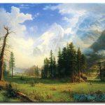 Phong Cảnh Rừng Núi M988