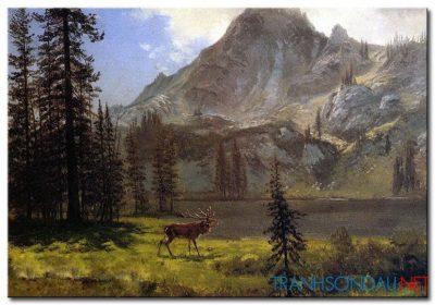 Phong Cảnh Ngọn Núi Cao M991