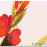 hoa poppy m2188-1