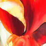hoa poppy m2194-3