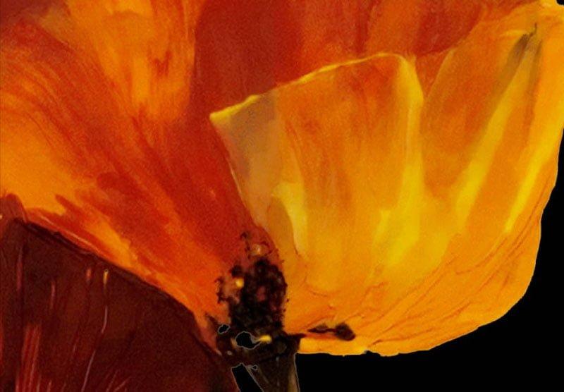 hoa poppy m2195-2