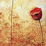hoa poppy m2200-1