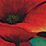 hoa poppy m2207-1