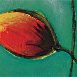 hoa poppy m2207-2