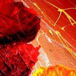 hoa poppy m2209-1