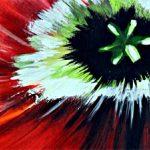 hoa poppy m2210-2