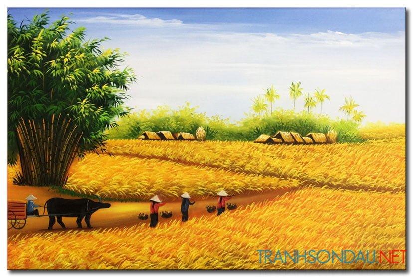 Mùa Gặt M1526