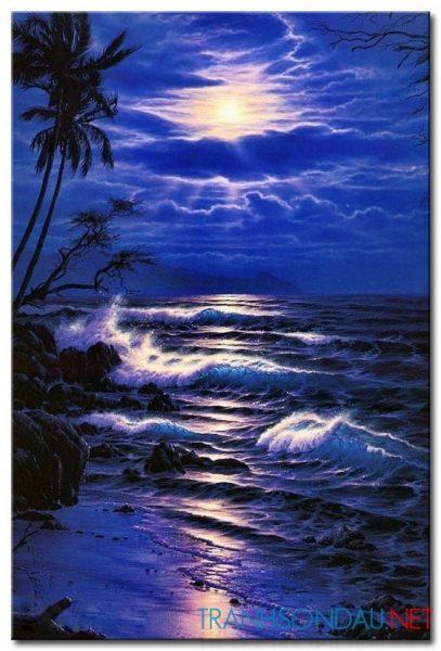 Biển Đêm M1772