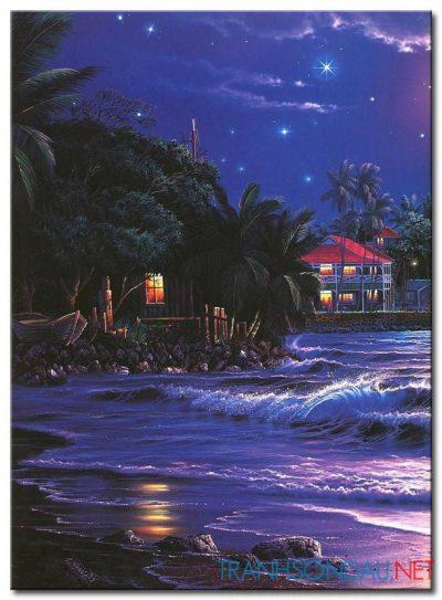 Biển Đêm M1781