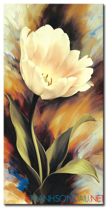 Tulip Khoe Sắc M1233