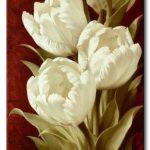 Tulip Khoe Sắc M1244