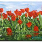 Tulip Khoe Sắc M1255