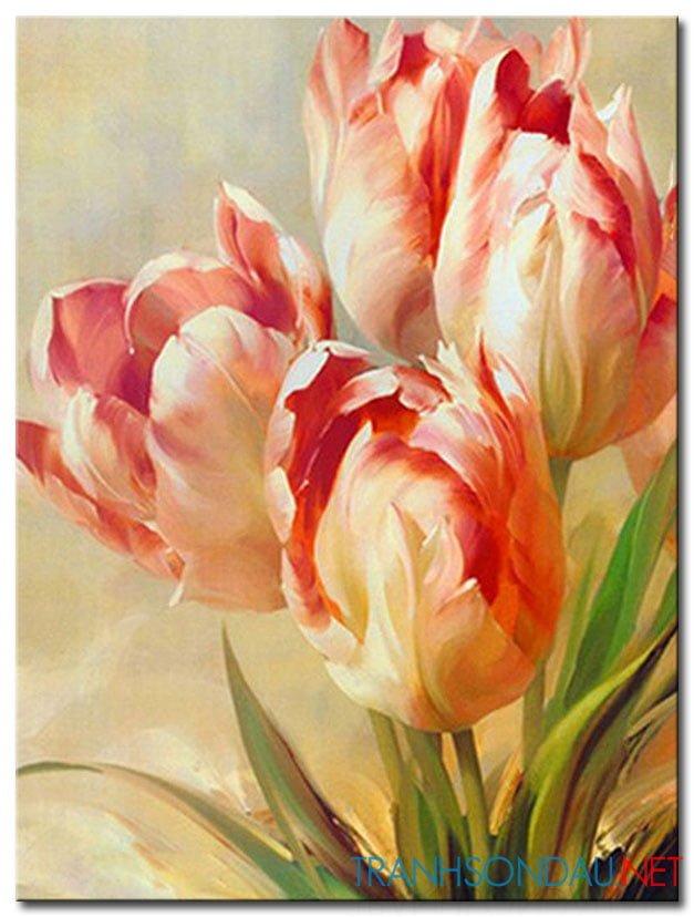 Những Cánh Hoa Khoe Sắc M1257