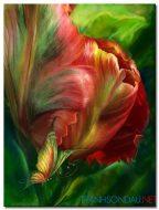 Những Cánh Hoa Khoe Sắc M1260