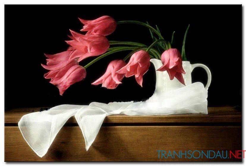 Tulip Khoe Sắc M1281
