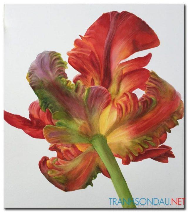 Những Cánh Hoa Khoe Sắc M1297