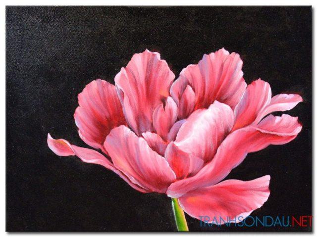 Những Cánh Hoa Khoe Sắc M1298