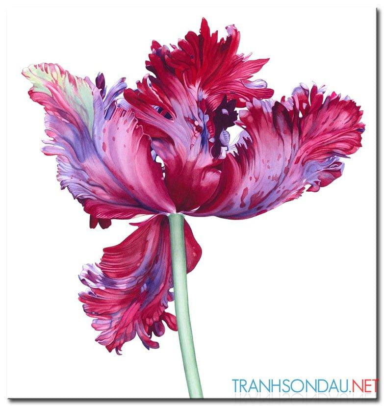 Những Cánh Hoa Khoe Sắc M1300