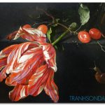 Những Cánh Hoa Khoe Sắc M1301