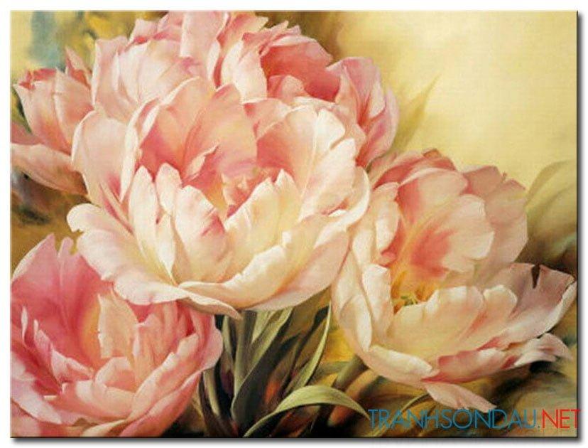 Những Cánh Hoa Khoe Sắc M1303
