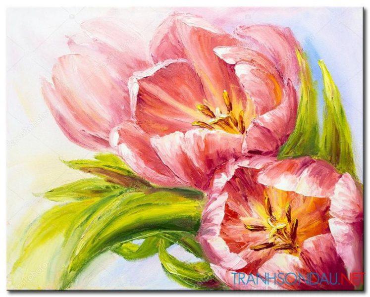 Những Cánh Hoa Khoe Sắc M1305