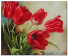 Tulip Khoe Sắc M1309