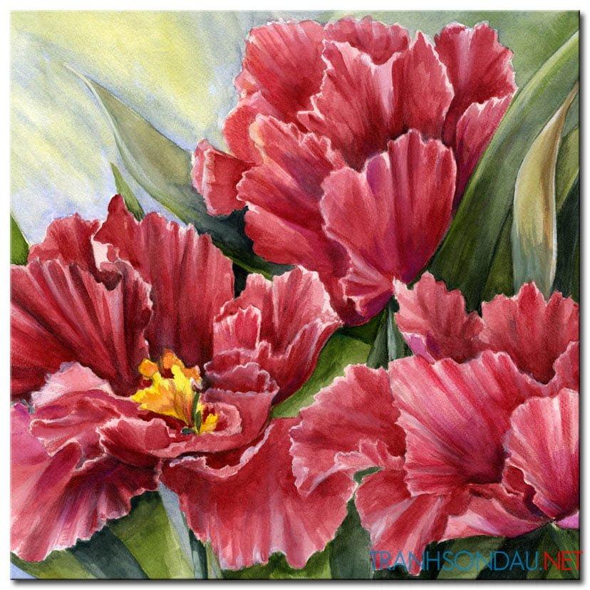 Những Cánh Hoa Khoe Sắc M1311